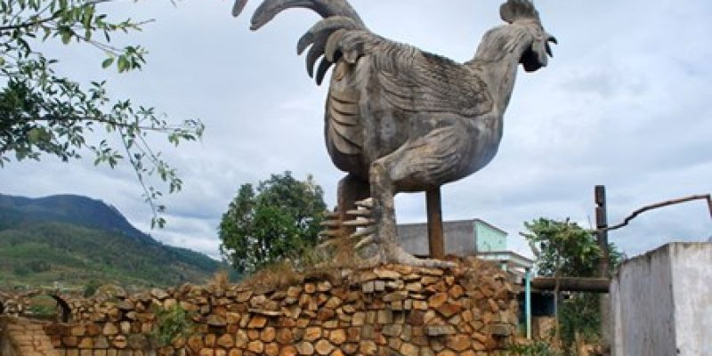 hatvacation dot com giant rooster 800x400 - Da Lat